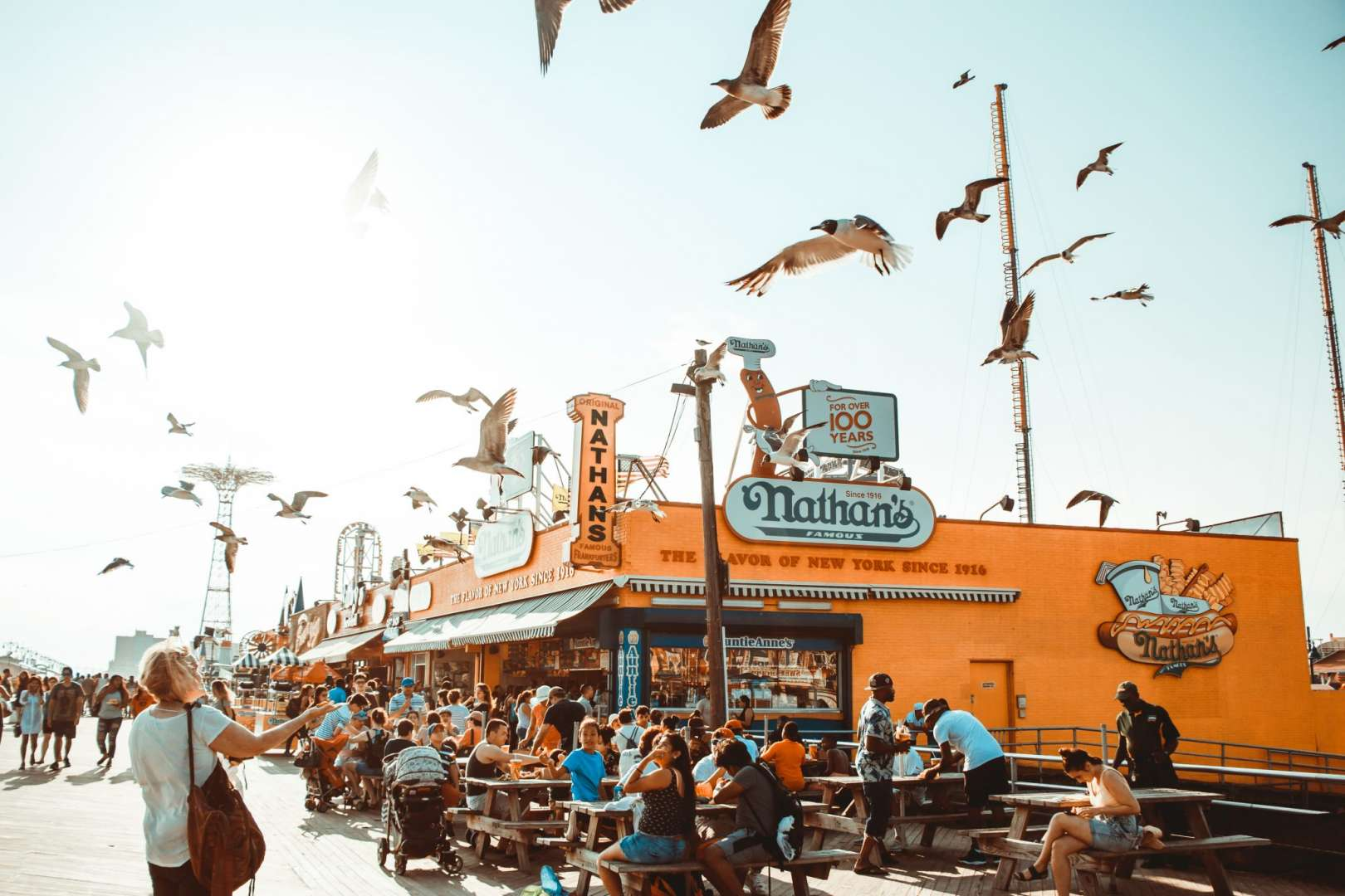 Seagulls Flying Near and American Diner