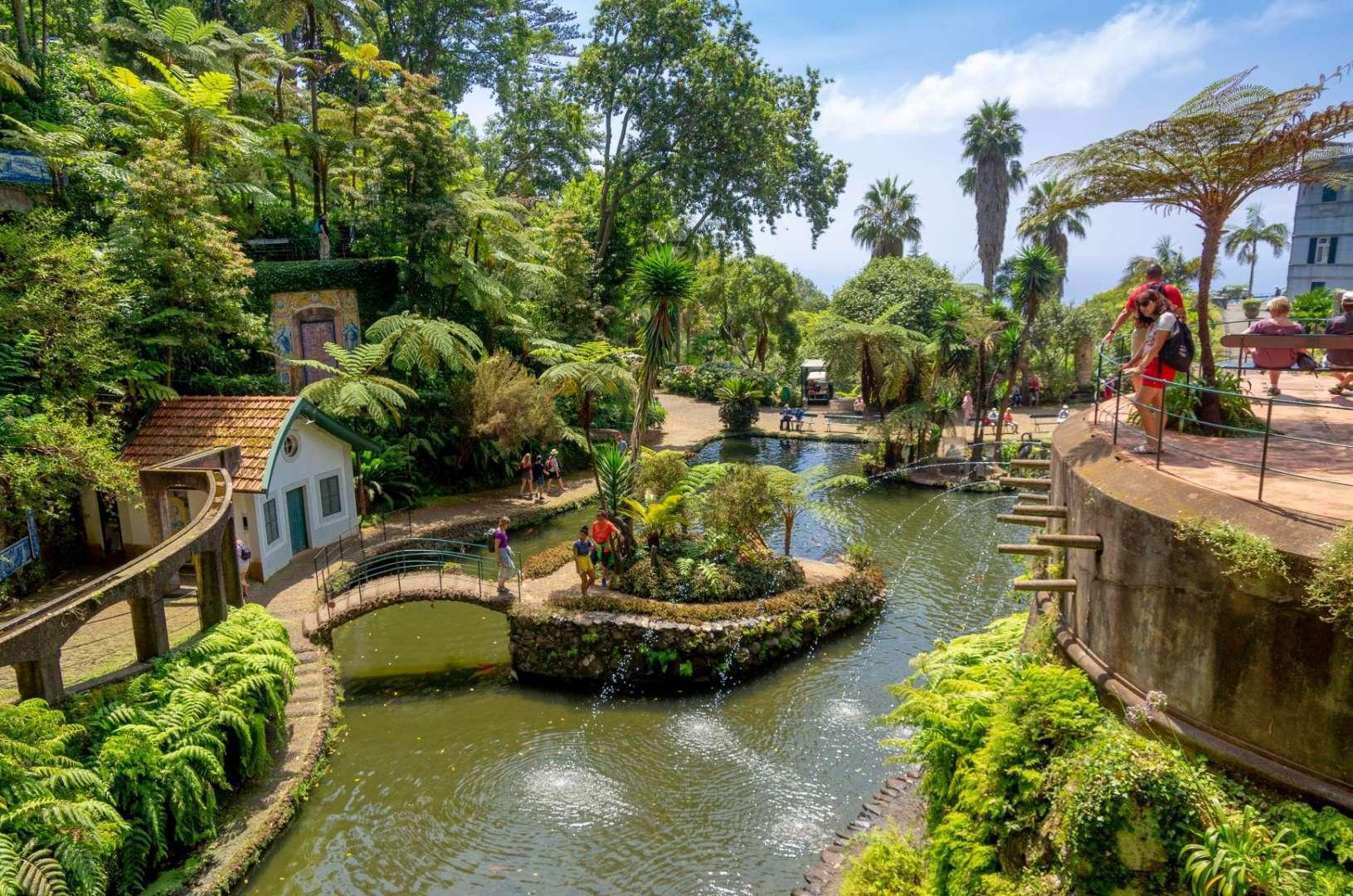 Reasons to Visit Madeira - Botanical Gardens