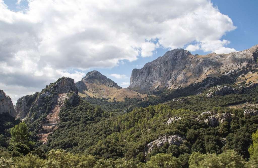 reasons-to-visit-majorca-nature