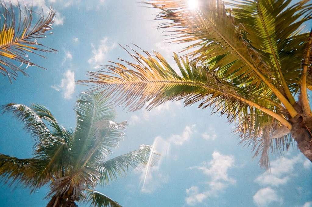 reasons-to-visit-orlando-sun