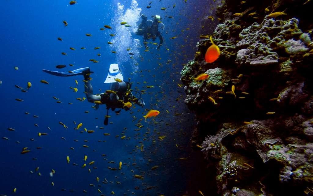 Scuba Diving in Malta