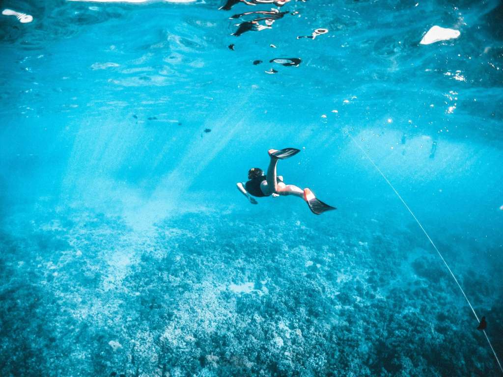reasons-to-visit-egypt-diving