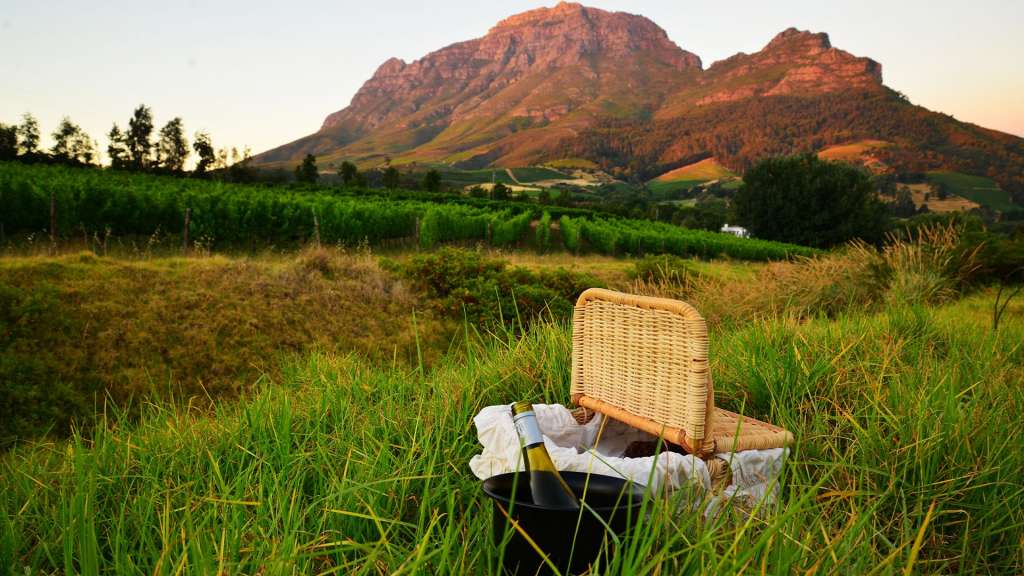 reasons-to-visit-south-africa-wine